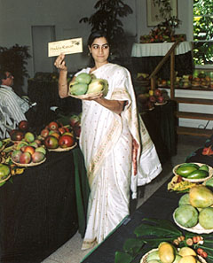 Mango Auction 2003